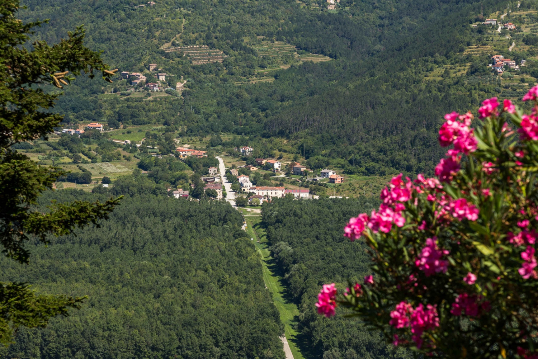 Inland Istria: Day Tour