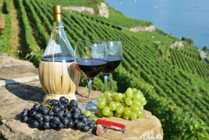 Korcula from Dubrovnik including Winery Visit (private)