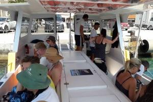Korčula Yellow Taxi Catamaran: Hop-On Hop-Off