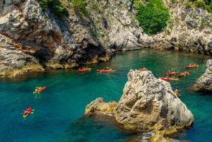 Lokrum Island and Dubrovnik City Walls Tour by Kayak