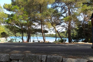 National Park Mljet Island Day Trip from Dubrovnik