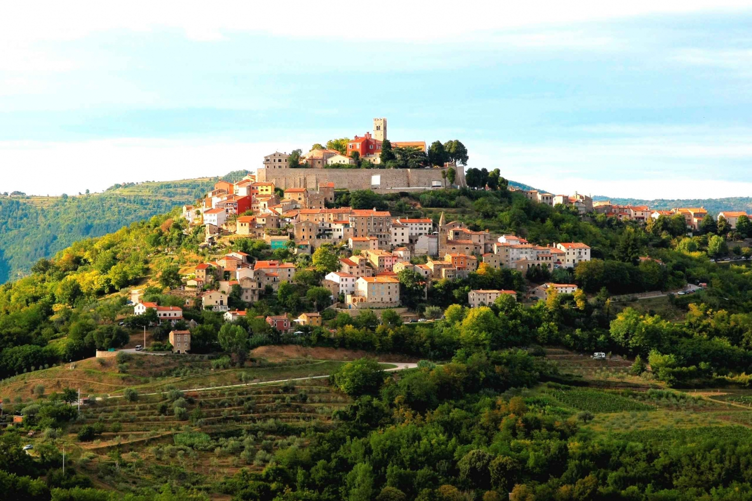 Pula and Motovun Tour and Truffle Hunting