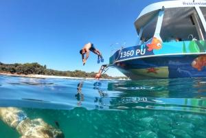 Pula: Glass-Bottom Boat Tour