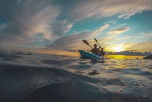 Pula: Kayaking and Snorkeling Sea Cave Exploration Tour