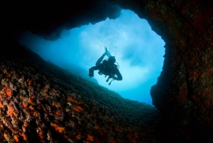 Scuba Diving in Dubrovnik: 1 Dive for Certified Divers