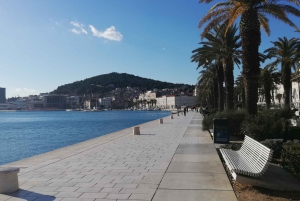 Split: Private Walking Tour and Diocletian's Palace