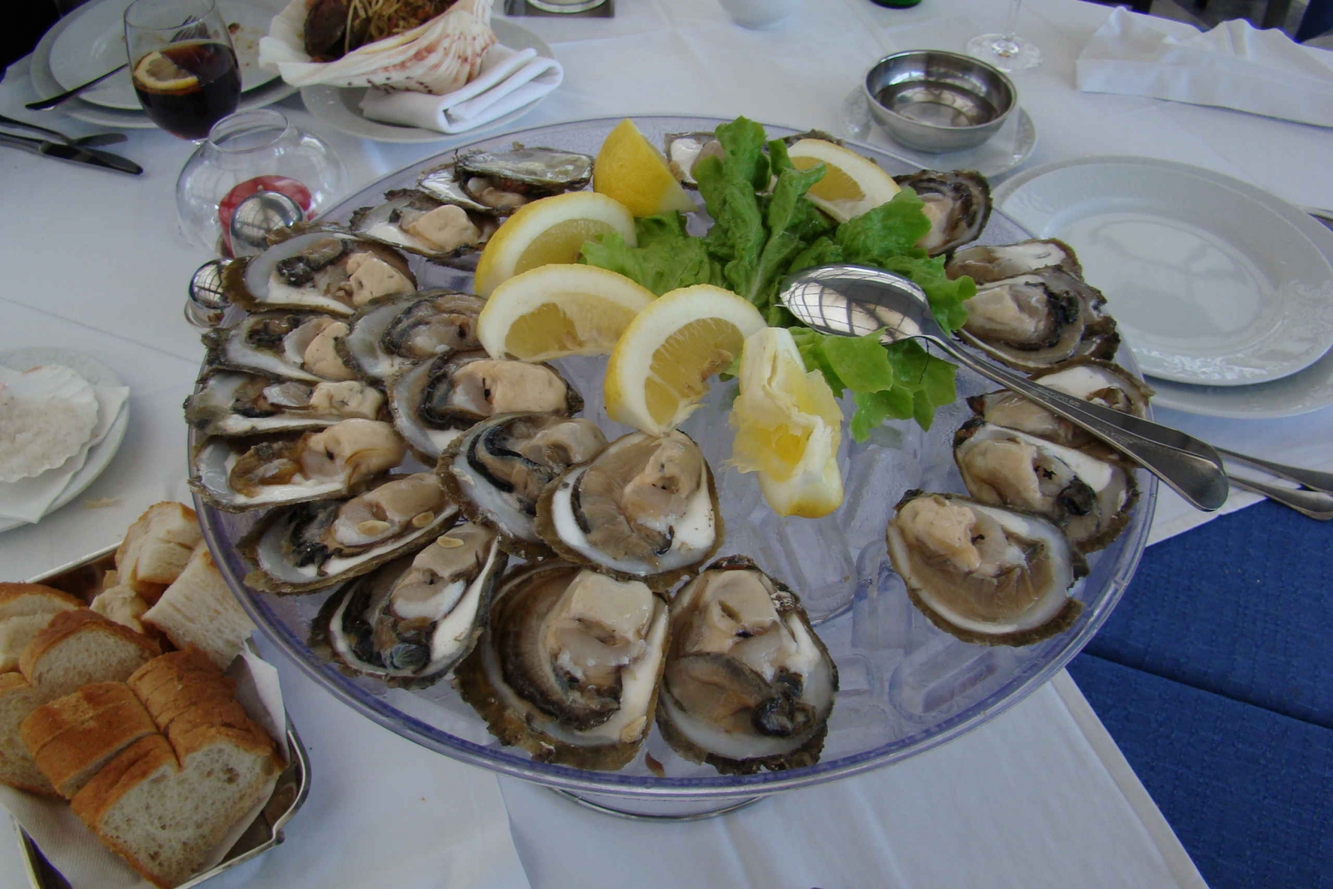 Ston, Oysters and Wine Tour From Dubrovnik
