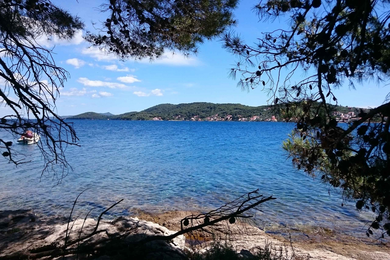 Ugljan, Ošljak and Školjić Islands Boat Tour from Zadar