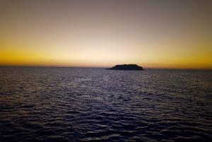Vrsar: 2-Hour Sunset Dolphin Watching Cruise