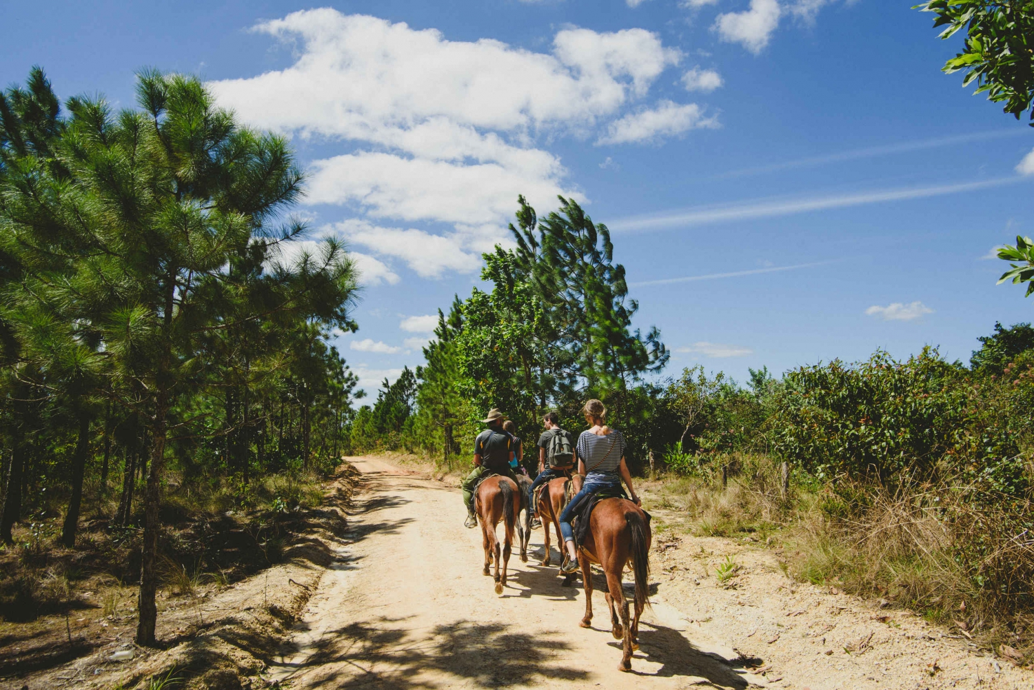 From Varadero: Viñales Valley Full-Day Trip