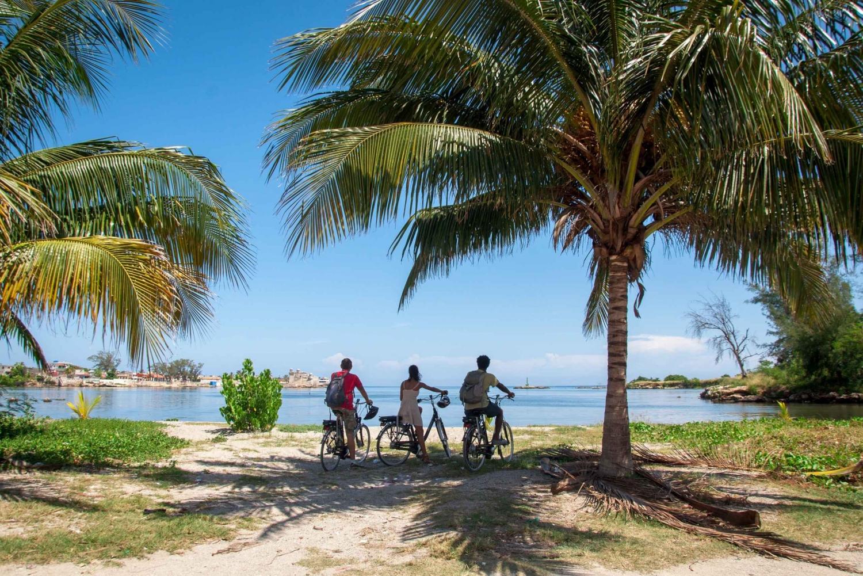 Best city tours in Havana