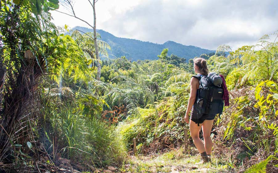 Spectacular Hiking Trails routes in Cuba