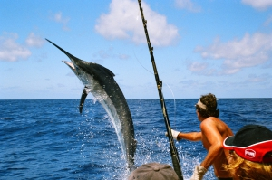 International Ernest Hemingway Needlefish Tournament