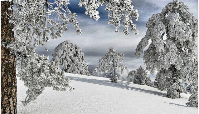 Skiing in Troodos