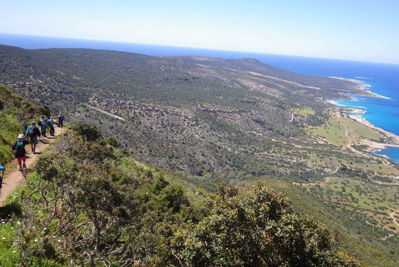 From Limassol: Akamas 8-Hour Panoramic Walk