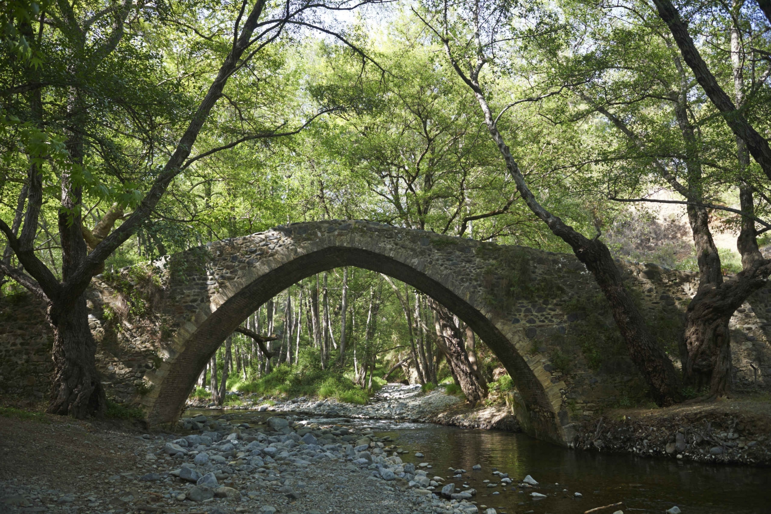From Paphos and Pissouri: Troodos Mountains Hidden Charms