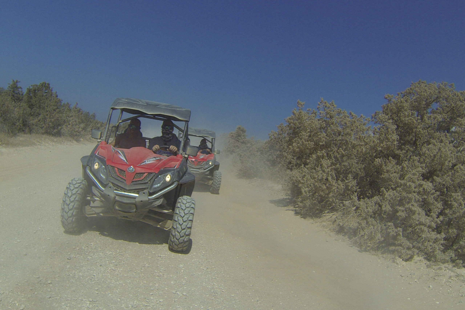 Lara Bay and Akamas by Quad Bike or Beach Buggy