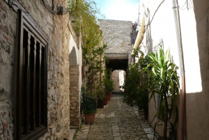 Larnaca: Lefkara Lace, Choirokoitia, and Birdwatching Tour