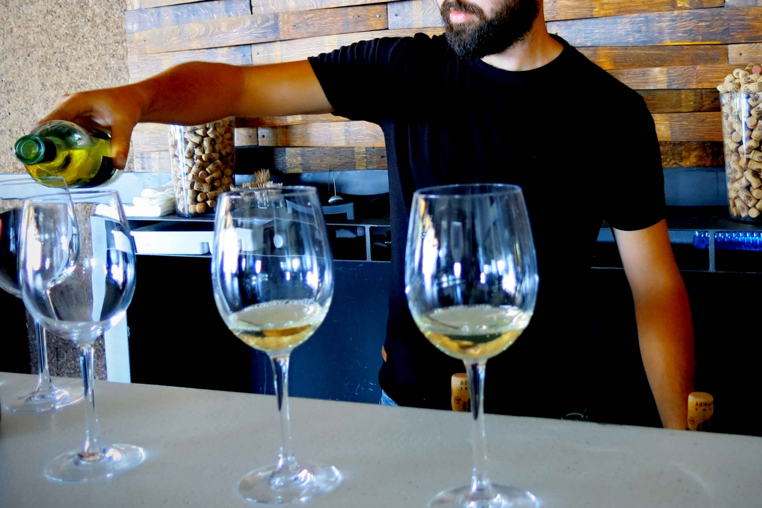 Limassol: Troodos Mountain Wine Tour with a Local