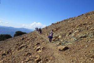 Nicosia: Cyprus Walking Trip