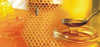 1st Honey and Beekeeping Festival in Kalopanayiotis
