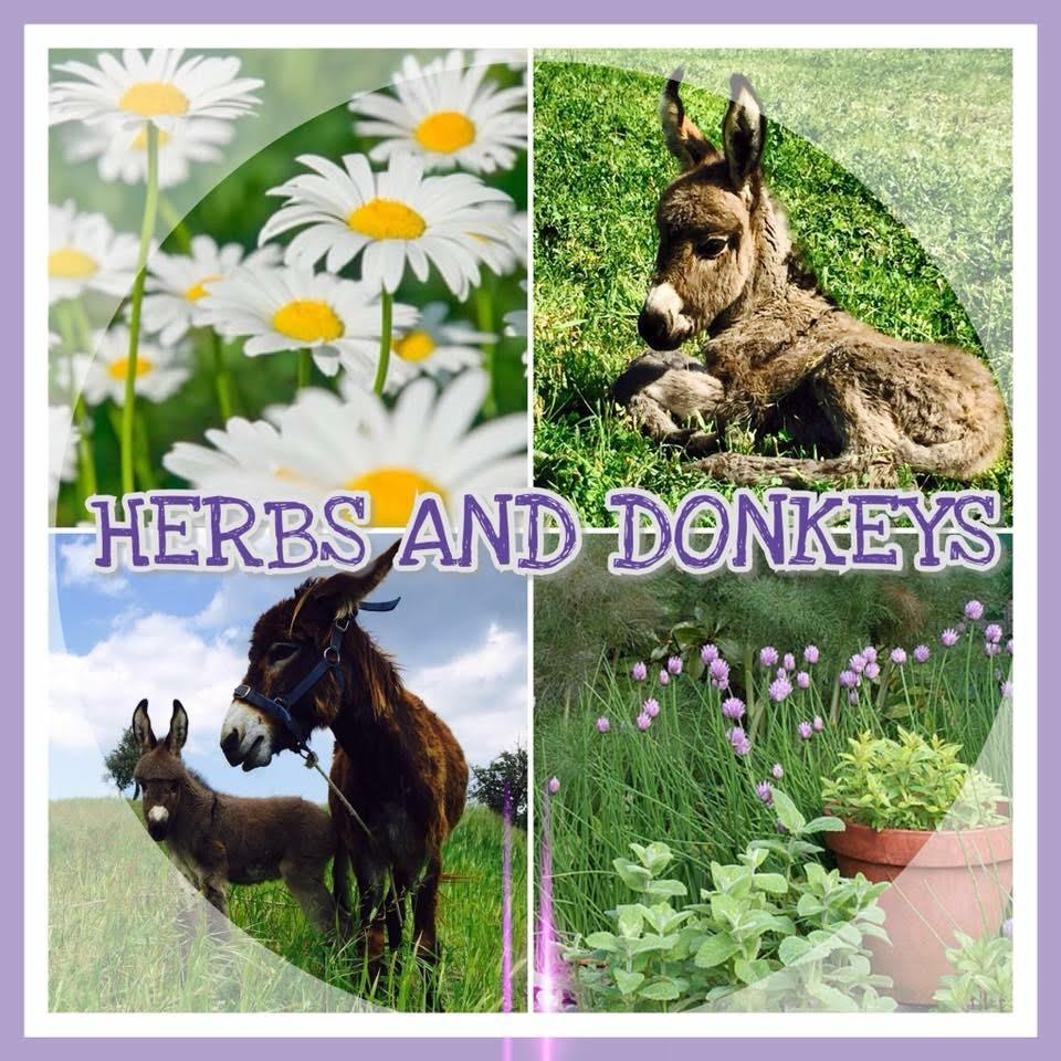 Herbs and Donkeys