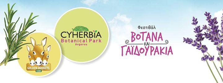 Herbs & Donkeys Festival