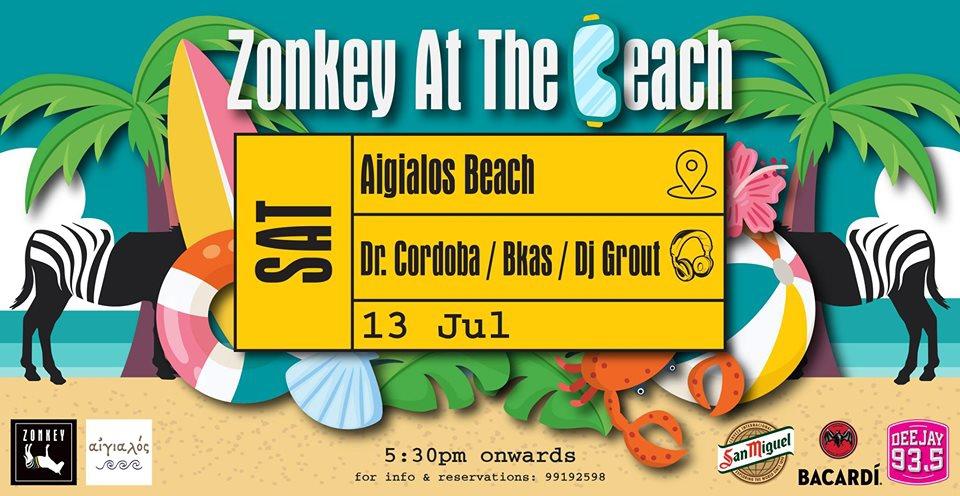Zonkey at the Beach