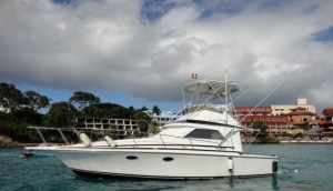 Mahi Mahi Fishing Tours