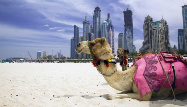Weekend Getaways in and Around Dubai