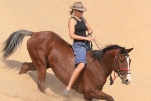 1 or 1.5 Hour Horseback Dubai Desert Park Ride