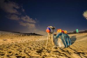 Arabian Dune Safari