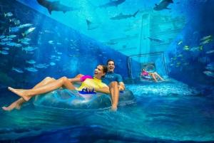 Atlantis Aquaventure & Lost Chambers Aquarium Ticket
