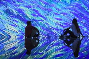 'Being Van Gogh' Digital Art Show