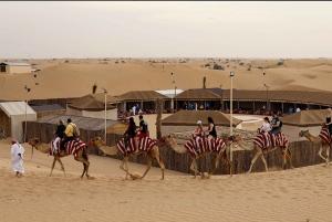 Dubai: Bike the Red Dunes, Camel Rides, Sandboarding and BBQ
