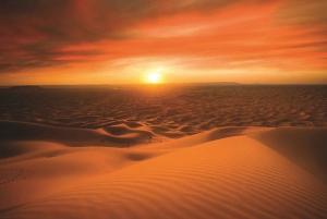 Dubai: Desert Safari, Camel Ride, and BBQ Dinner