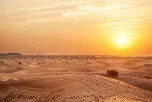 Dubai: Desert Safari with BBQ and Sheikh Zayed Mosque Tour