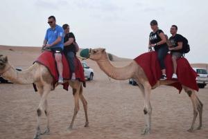 Dubai Desert Wonder - Half Day Desert Safari 4WD