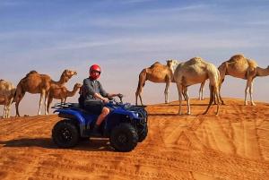 Dubai Evening Desert Quad Bike Adventure and BBQ Dinner