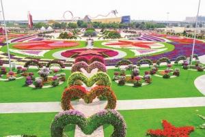 Dubai Flora and Fauna 4-Hour Tour
