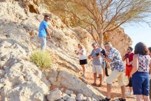 Dubai: Fossil Red Dunes & Camel Rock Safari with BBQ
