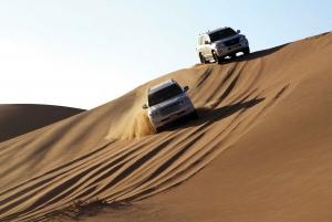 Dubai: Go Dubai Explorer Pass Save up to 41% on Attractions
