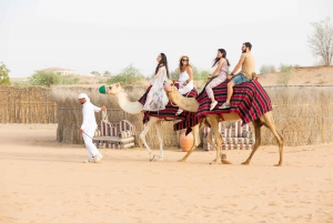 Dubai: Hot Air Balloon Ride with Camel Ride & Falcon Photo