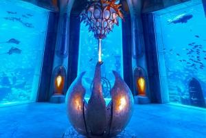Dubai: Lost Chambers Aquarium Entry Ticket