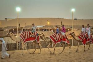 Dubai: Sahara Dunes & Camel Caravan with BBQ at Al Khayma