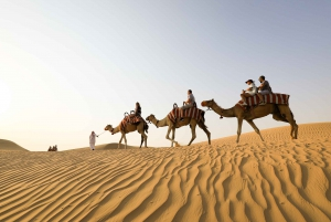 Dubai: Sunrise Camel Trek with Breakfast