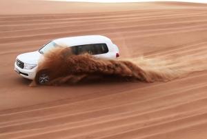From Arabian Safari Experience