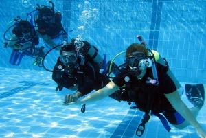 From Dubai: 2-Day PADI Open Water Course in Dibba Fujairah