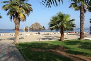 From Dubai: Fujairah East Coast and Mountain Tour