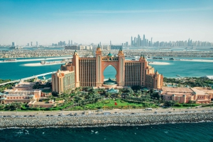 From Dubai Port: Old and Modern City Tour with Blue Mosque
